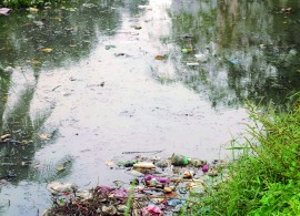 riviere sale